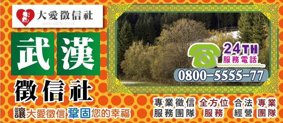 武漢市徵信社